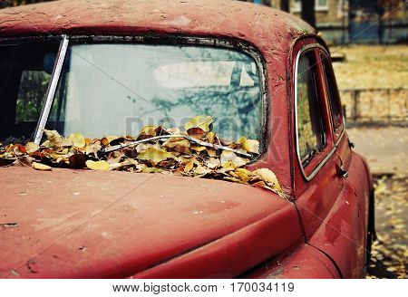 Rusty old car under the fallen leafs