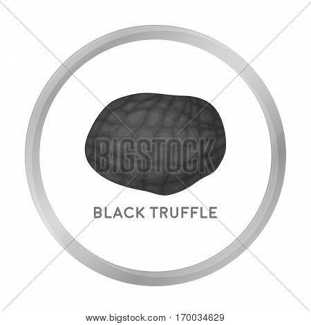 Black truffles icon in monochrome style isolated on white background. Mushroom symbol vector illustration.