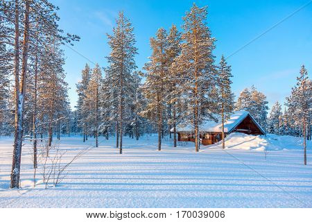 Northern Winter snowy forest Landscape with small wooden lodge, big trees covered snow, beautiful winter weather