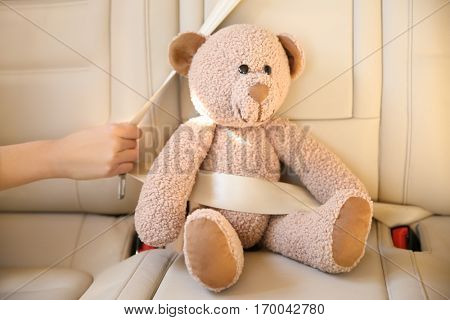 Car seat with buckled  teddy bear