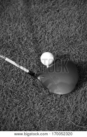 Golf Driver Hitting Golf Ball on Golf Tee