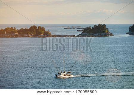 Fishing boat trawler at sea moving at coastline full of shrimps. Sea food business
