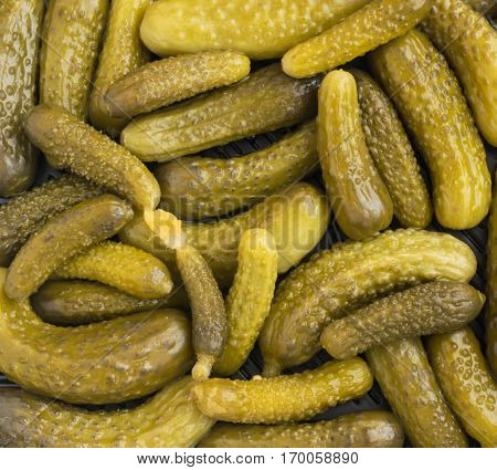 Homemade Pickled Gherkins Texture. Small Cucumbers Background