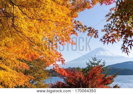 Fujisan in autumn season