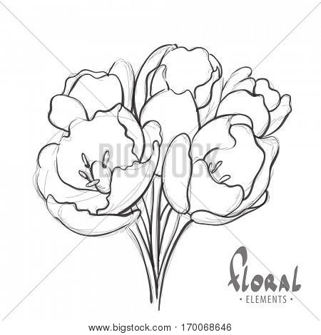 Flowers on a white background painted marker
