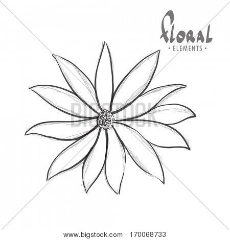 Classic flower bud in black and white