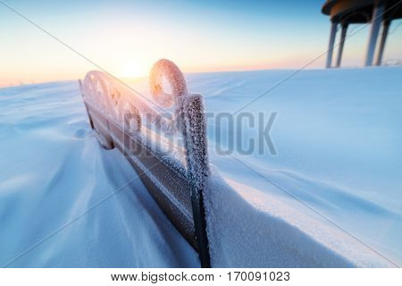The back forged snow-covered benches. The low sun rayed through curls wrought metal. Frost.
