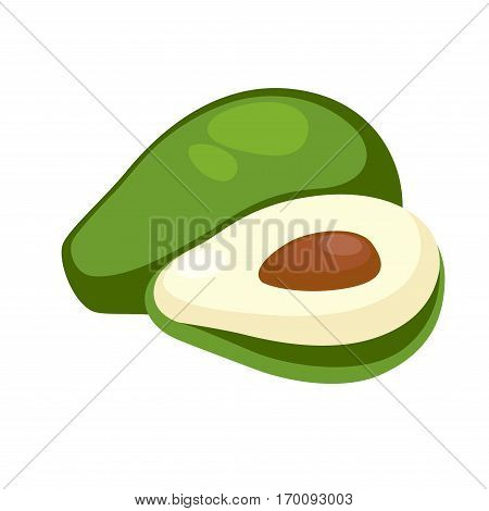 Avocado whole and half isolated on white. Avocado or alligator pear botanical large berry containing single seed. Exotic nutrition tropical fruit, realistic vector illustration in flat style