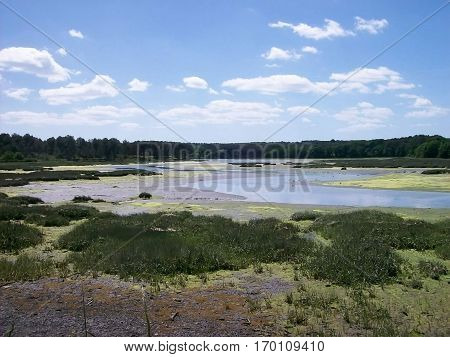 Landscape of marshland of Noyalo near Vannes to Britain from France