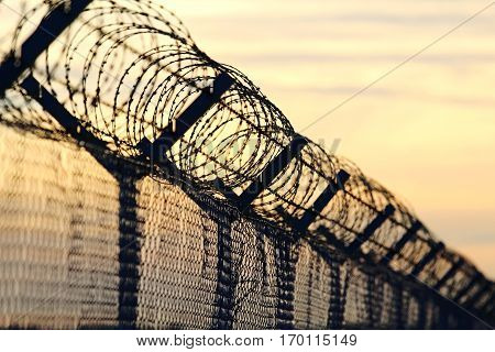 barbed wire steel wall against the immigrations in europe