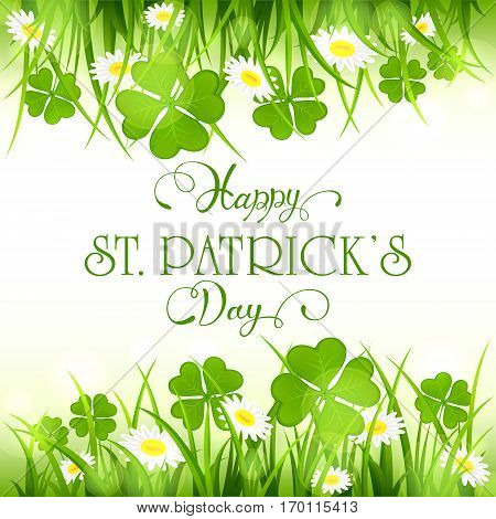 Patricks Day background with green clover and flower in grass, holiday lettering Happy St. Patrick's Day, illustration.