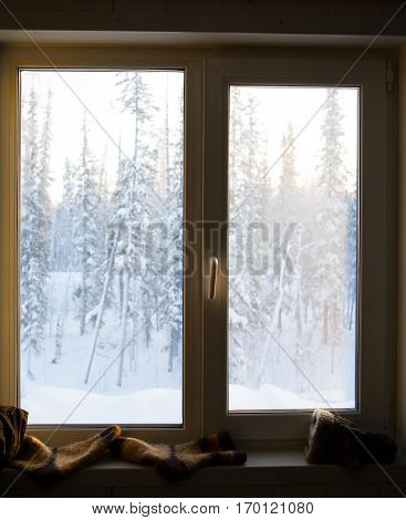 Window on the background of the beautiful winter forest