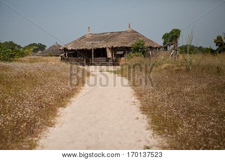 african reed hut and path though savannah