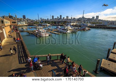 San Francisco, California, United States - August 14, 2016: Aerial view of San Francisco skyline from Pier 39, a popular tourist attraction for Sea Lions. Boats and yachts docked at Fisherman's Wharf.