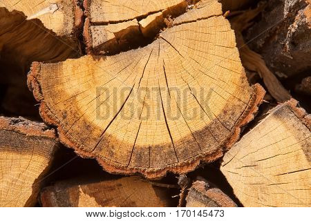 Close Up Shot Of Pile Of Firewood Stacked Together
