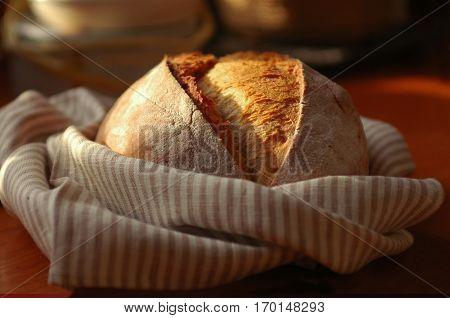 A crusty loaf of fresh rye bread