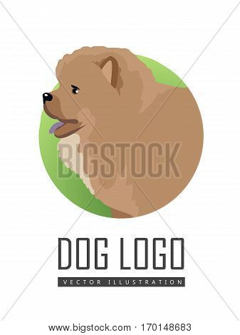 Dog logo vector illustration Chow Chow dog breed isolated on white. Puffy-lion dog. Sturdily built dog, square in profile, with broad skull and small, triangular, erect ears with rounded tips. Vector