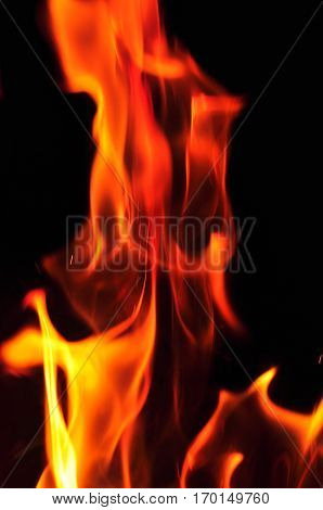 Fire Flames On A Black Background. Blaze Fire Flame Texture Back