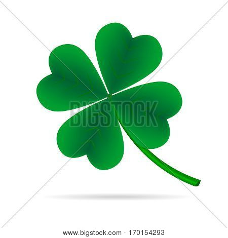 Leaf clover on a white background. Green cloverleaf.