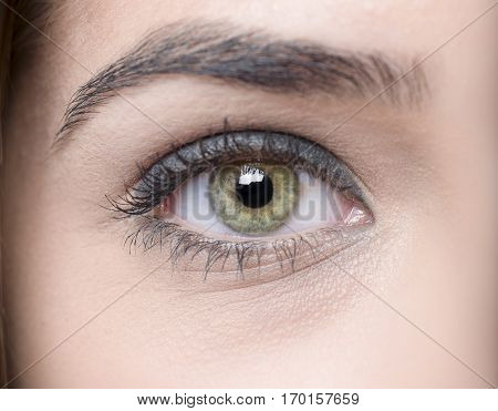 Goregeous Closeup Shot Of Human Eyes