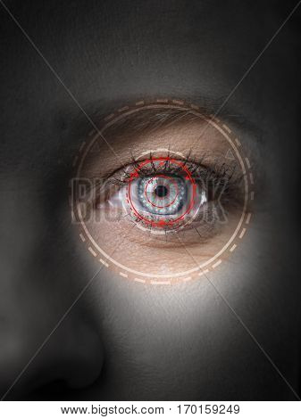 Retina eye biometric security scanner  iris authentication