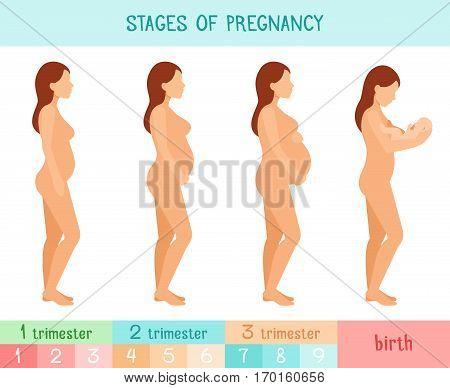Пошаговое беременности