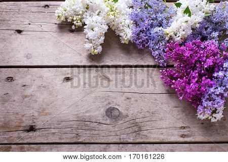 Spring floral background. Fresh aromatic lilac flowers on vintage wooden planks. Selective focus. Place for text. Floral still life.