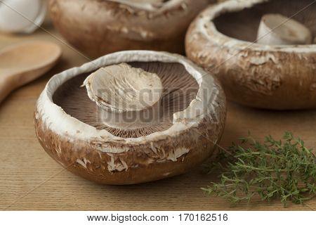 Fresh raw organic portobello mushrooms