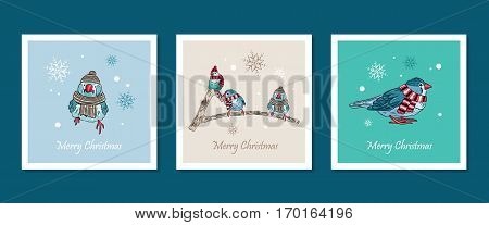 Vector Cards With Cute Birds Warm Dressed In Winter Season