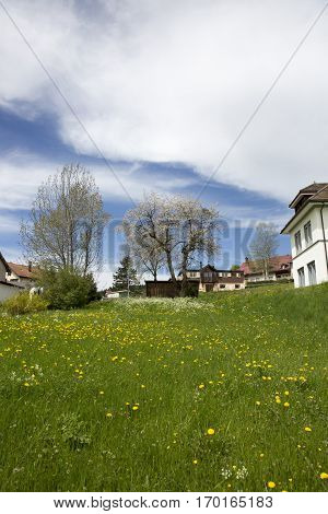 landscape of Jura mountain with blooming green meadow and chalets Switzerland