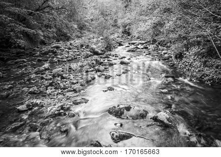 black and white Torrent river running through the mountain