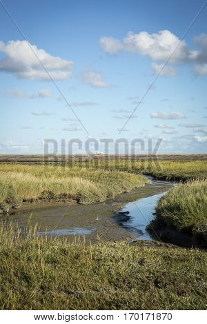 Dutch maritime landscape with heathland blue sky and cloud Waddenzee Friesland The Netherlands