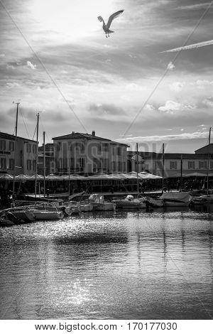 Black and white view of the Port of Saint Martin De Re Ile de Re France