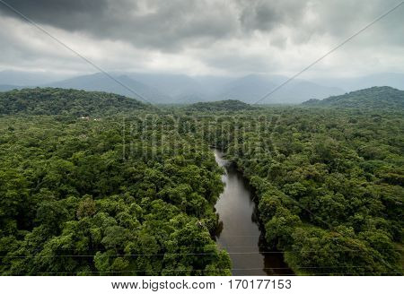 Aerial View of Tropical Rainforest