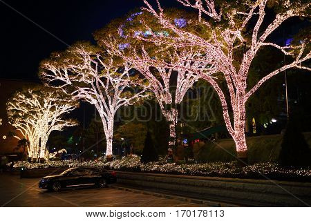 SEOUL - NOV 3, 2015: Trees covered with lamps at night. Seoul refuses illumination for holidays after death of Kim Jong Il