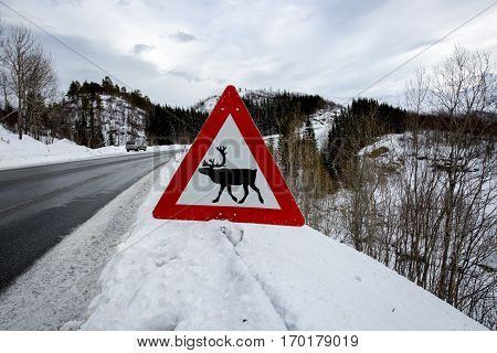 Norwegian reindeer warning road sign with snowy landscape in the background