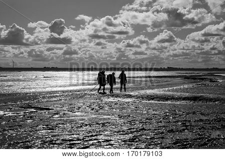 Black and white maritime landscape with reflection of clouds in low tide water and silhouettes of a group of people trekking Waddenzee Friesland The Netherlands