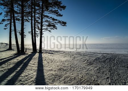 Russia Siberia Novosibirsk region winter landscape in the Ob reservoir