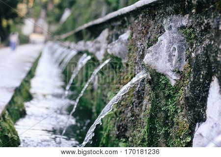 Villa d'Este in Tivoli. Beautiful fountains closeup
