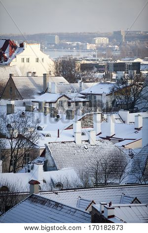 City scape of the old town of Tallinn
