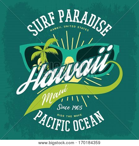 Surfing holiday sign for american hawaii island banner. Oceania paradise or aloha state banner with sunglasses and palms, shining sun. T-shirt or clothing branding, vacation and ocean travel signboard