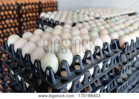 Eggs From Duck Farm In The Package That Preserved For Sale.