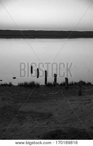 Black and white view at sunset with reflection in still water over nature reserve Casse de la Belle Henriette, l'Aiguillon sur Mer,  Vendee, France