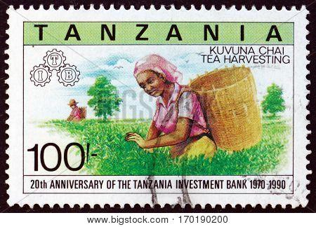 TANZANIA - CIRCA 1991: a stamp printed in Tanzania shows Tea harvesting Tanzania investment bank 20th anniversary circa 1991