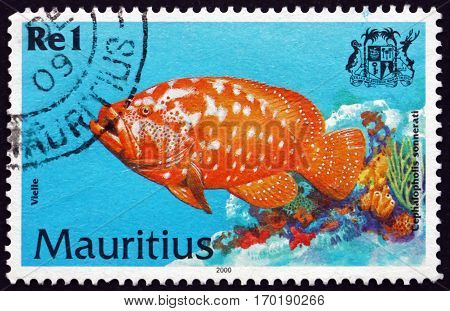 MAURITIUS - CIRCA 2000: a stamp printed in Mauritius shows Tomato hind cephalopholis sonnerati is a species of marine tropical fish circa 2000