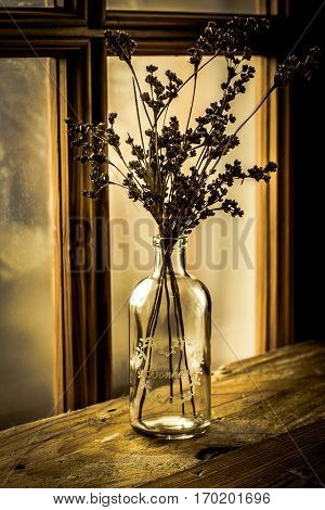 Dry wild field flowers in a vintage glass bottle on an aged wood table by a georgian window, selective focus