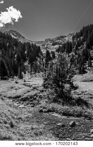 Black and white view of bucolic summer alpine landscape Swiss Alps mountain massif canton du Valais Switzerland