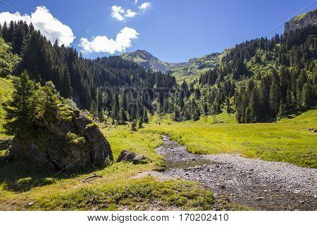 Bucolic green summer alpine landscape Swiss Alps mountain massif canton du Valais Switzerland