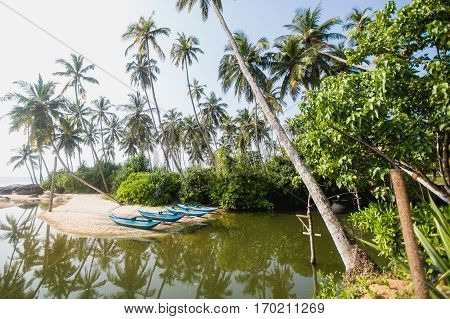 Green palms and fishermen's boats at empty beach in Tangalle Sri Lanka.