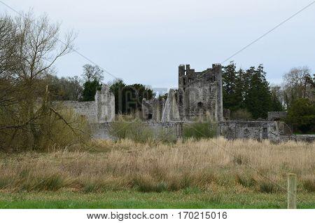 Desmond castle ruins in Adare Ireland's countryside